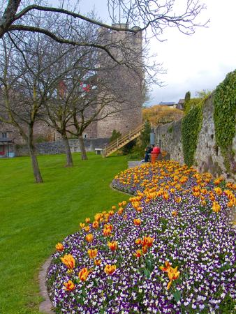 la tour de peitz,lac leman ,vaud,suisse Stock Photo