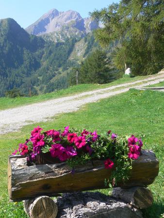Ovronaz, 발레, 스위스의 아름다운 전망