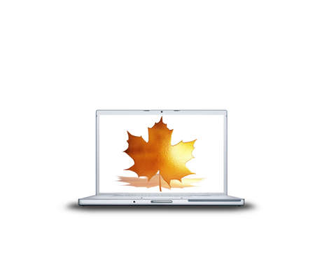 canabis: 3D canabis leaf on laptop screen isolated on white back