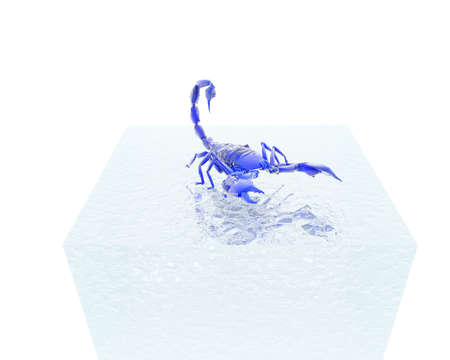 3D bright scorpion isolated on a white background Stock Photo - 3840865