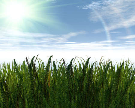 3D green grass and blue sky creative abstract background Stock Photo - 3840355