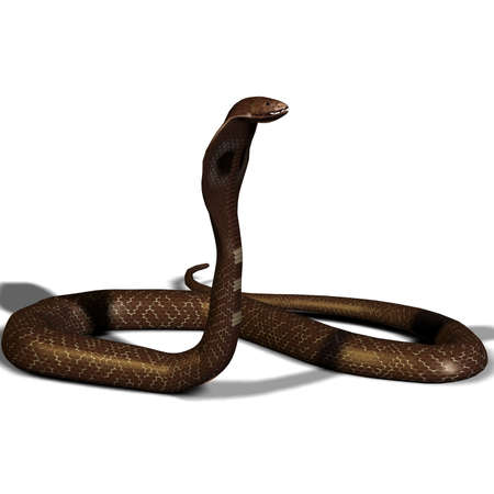 forked: snake cobra in 3D isolated on a white background Stock Photo