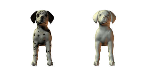 dalmation: dalmation dog 3d model isolated on white