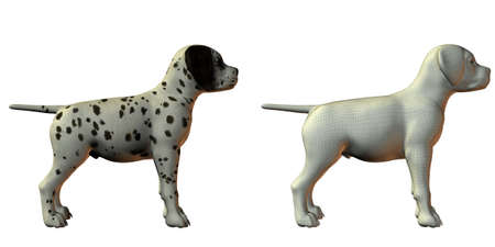 trained: dalmation dog 3d model isolated on white