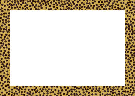 giraffe frame: animal fur abstract foto frame with white back