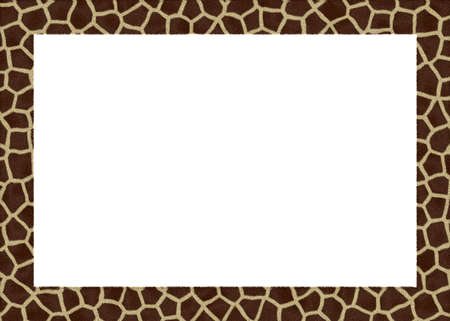 giraffe skin: animal fur abstract foto frame with white back