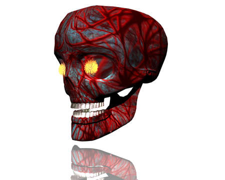 3D big realistic patterned skull isolated on white Stock Photo - 3840148