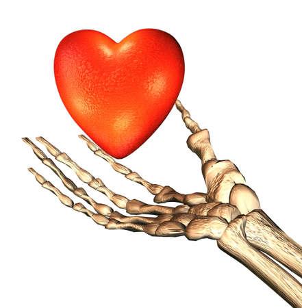 red 3D heart in bones hand photo