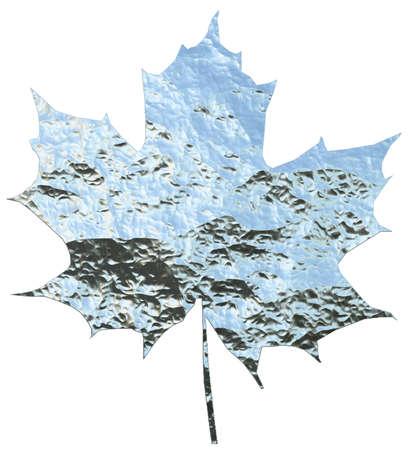 metallic maple leaf isolated on white photo