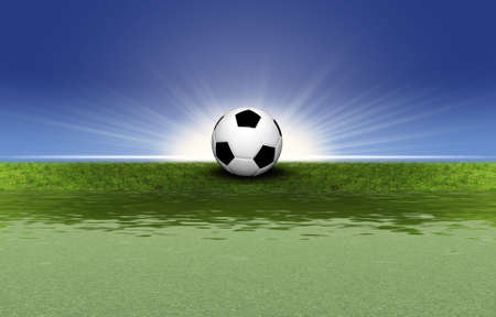 soccer ball on the grass Stock Photo - 4228592