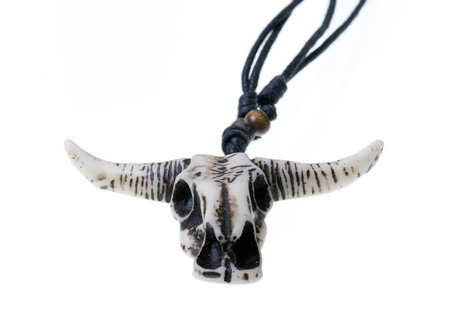 Longhorn Skull isolated on a white background photo