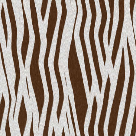 zebra fur texture abstract background, seamless photo