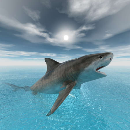 tiger shark swimming computer 3d render photo