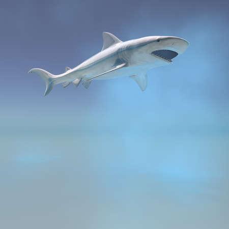 tiger shark swimming underwater computer 3d  render Stock Photo - 7005421