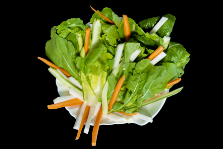 Mix fish menu greenies with rocket leaves, carrots, lettuce and sliced ground apple on black background