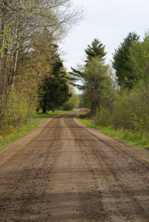 backroad: A beautiful view of a country backroad.