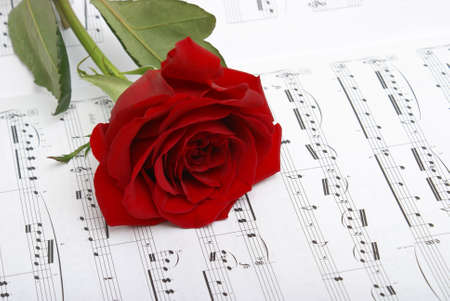 A red rose compliments the notes of music. Stock Photo - 4981315