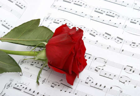 sheet music: A rose compliments some sheet music to a piano piece.