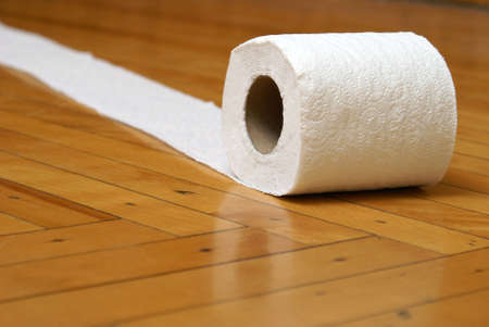 A roll of toilet paper has gotten away and is rolling on the floor.