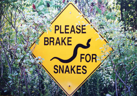 A yellow sign that is meant to protect snakes from getting killed on the road. photo