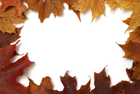 A frame made with autumn maple leafs. photo