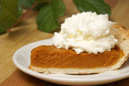 A fresh slice of pumpkin pie with whipped cream on top.