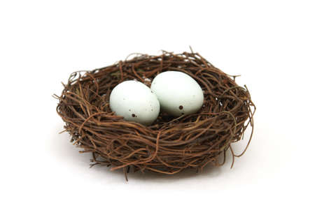 A macro shot of a bird's nest with two eggs over a white background.