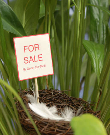 property: A conceptual piece of property has gone on the market.