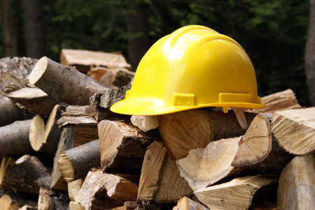 logging: Its better safe than sorry when your in the forest cutting trees down, thus the hard hat on the woodpile.