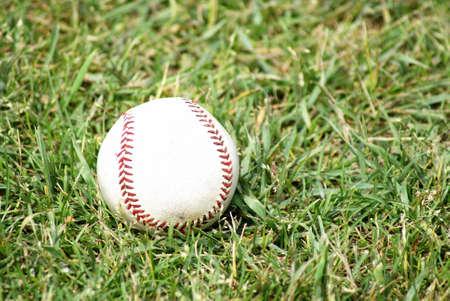 A pro baseball sits on the fields green grass. photo