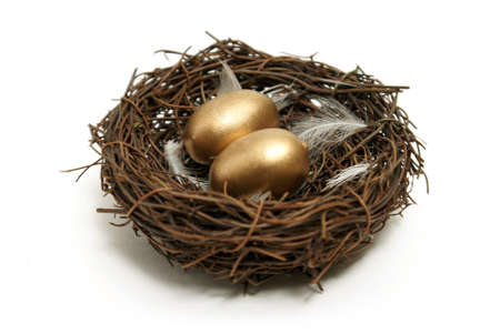 retirement: A nest with golden eggs for many financial concepts.