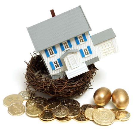 多くの概念のためのコインと黄金の卵の巣の家。 写真素材