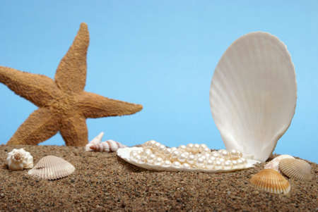 A pearl necklace rest inside a seashell in this beach scene. photo