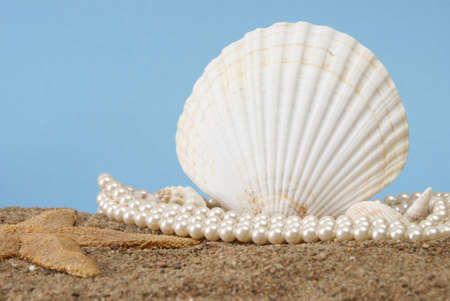 A pearl necklace rest in the sand near a seashell in this beach scene. photo