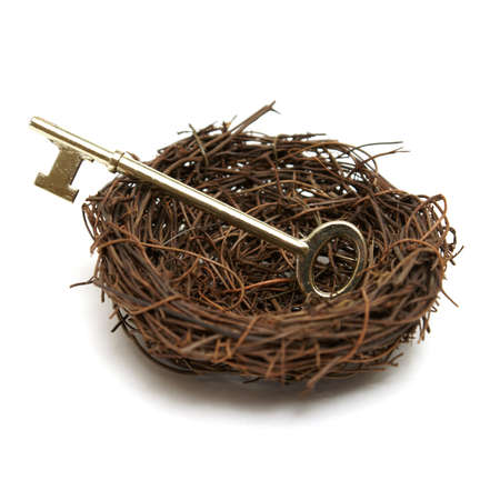 lays: A brass skeleton key lays in a nest for several different concepts.
