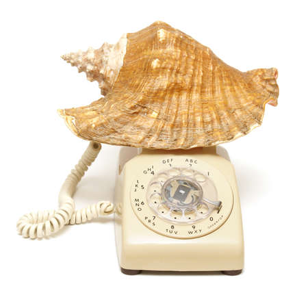 A conceptual shell phone great for booking vacations or just a day at the beach. photo