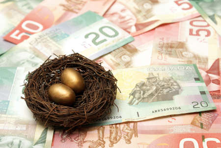 canadian cash: A conceptual image based on creating a wealthy nest egg.