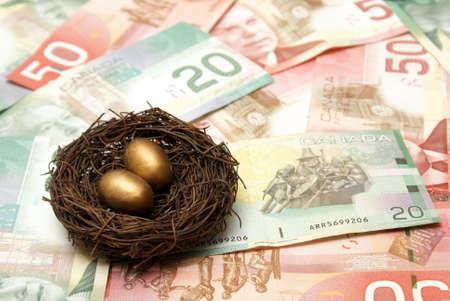 gniazdo jaj: Koncepcyjne obrazu opiera się na tworzeniu bogatego skarbonkę.