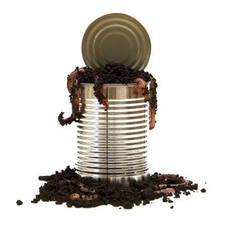 regenworm: Een conceptueel beeld met betrekking tot het gezegde openen van een blikje van wormen.