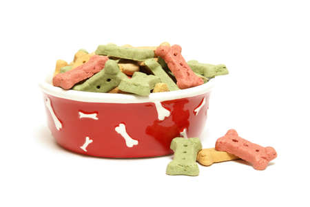 A stylish dog bowl full of the mans best friends treat.