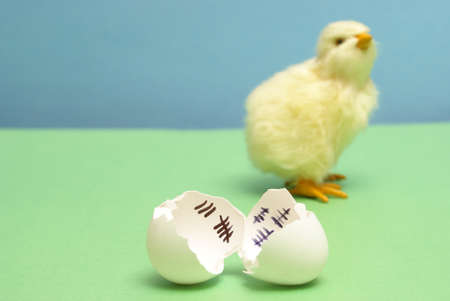 A chick has been counting the days to his release as a hatchling. Banque d'images