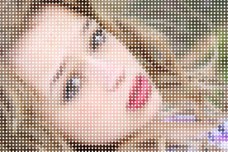 mosaic: A portrait of a young beautiful woman in a mosaic effect.