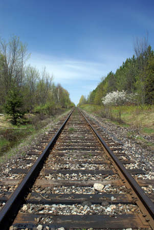 threw: A railroad track going threw the wooded forests of Ontario, Canada.