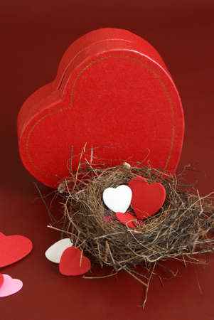 incubate: A genuine nest houses some heart shapes in the spirit of love.