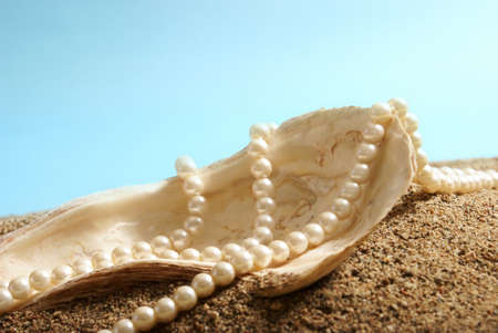 A large oyster shell and a pearl necklace on display over some sand.