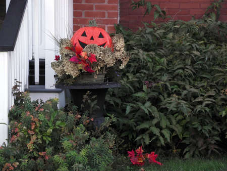 adds: A pumpkin adds a little decor to the season of thanksgiving and Halloween.