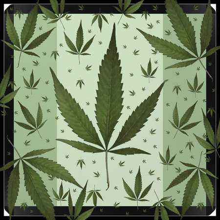 weeds: A square format design using weed leaves.