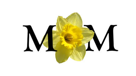 cropped out: Mom is spelled out in english using a cropped flower as a design replacement for the centre letter.