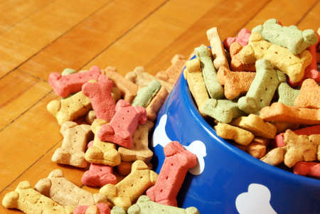 abundant: A closeup view of an abundant supply of dog treats overflowing his bowl on the hardwood floor of his domestic lifestyle. Stock Photo