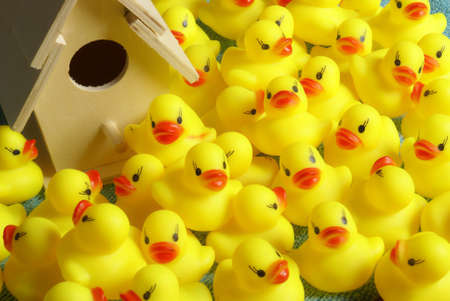 squeak: This is where all the rubber ducks come to life before they move to your bathtub.